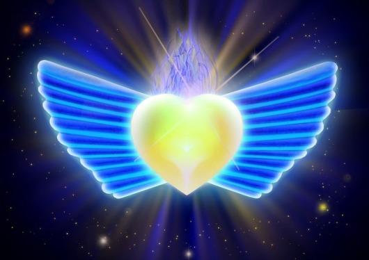 wings-1885534_640